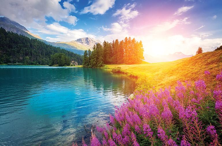 Magnifique création de Dieu